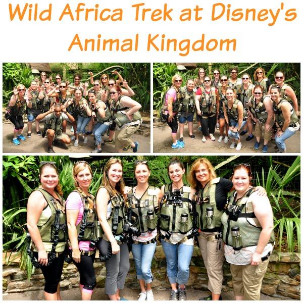 Disney's Wild Africa Trek
