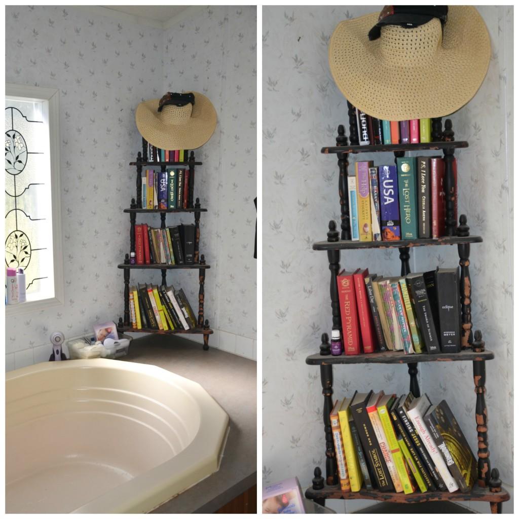 bathroom books